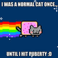 Nyan cat's words of wisdom - nyan-cat fan art