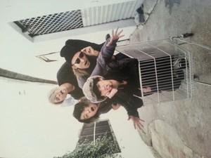 One Ok Rock!