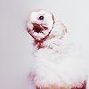 Owls アイコン