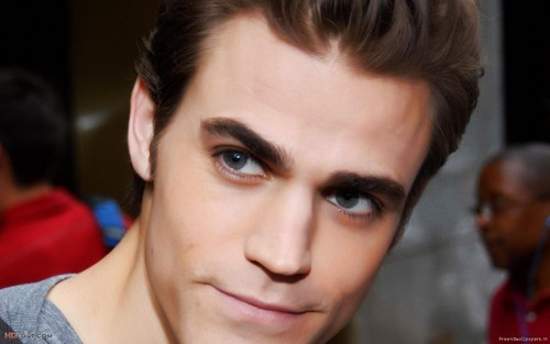 Paul Wesley wallpaper containing a portrait called Paul Wesley