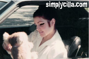 Priscilla Presley recieves present from fãs whilst in car