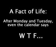 A fact of life
