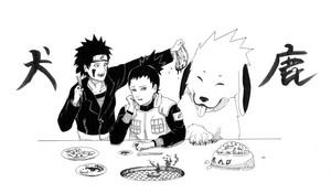 Shikamaru, Kiba and Akamaru