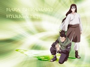 Shikamaru and Neji