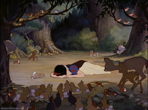 Snow White wallpaper probably containing a lippizan, a pacific walrus, and an atlantic walrus entitled Snow White Crying