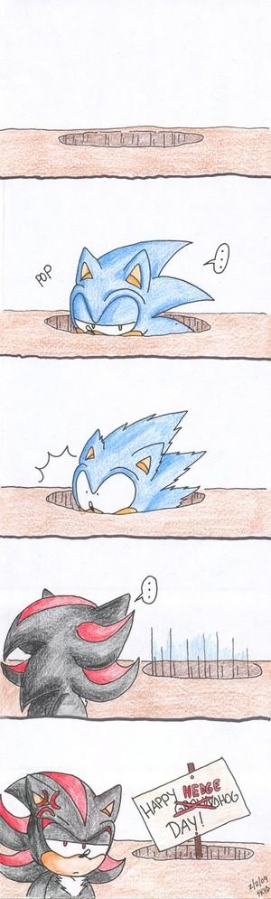 .:Happy Hedgehog Day:.