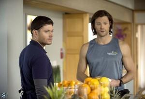 Supernatural - Episode 9.13 - The Purge - Promo Pics
