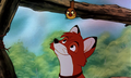 ★Tod Screens★ - the-fox-and-the-hound photo