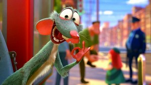 Buddy the rato