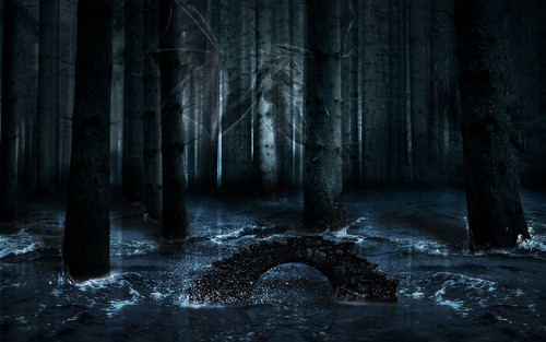 The Vampire Diaries wallpaper probably with an american white birch, a glory hole, and a ponderosa called Dark forest