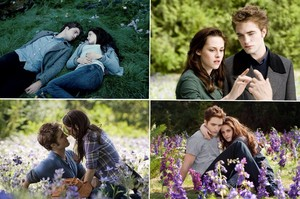 Bella and Edward meadow