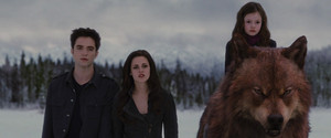 Jacob Renesmee Bella and Edward
