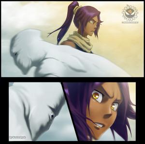 *Yoruichi v/s Aizen*
