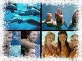 mermaids - h2o-just-add-water fan art
