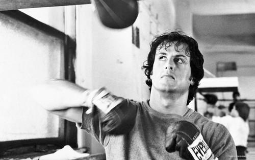 namelessbastard wallpaper possibly with a espátula titled Rocky training!!
