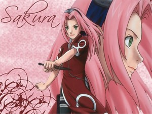 sakura long hair