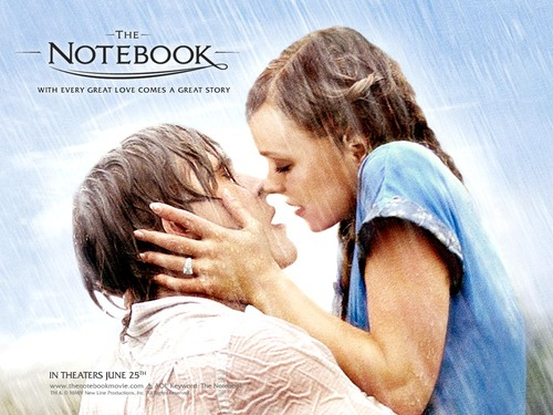 The Notebook wallpaper possibly with a triceratops and a conch called the notebook