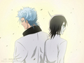 Ulquiorra and Grimmjow