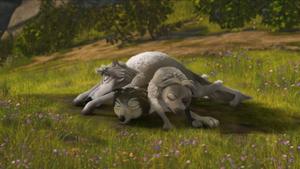 Wolf Pile!!!!!!!!!!!