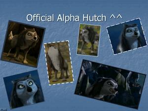 Hutch the Beta!!!!