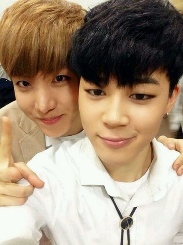 bangtan boys wallpaper with a bearskin entitled Jimin with J-hope Selca