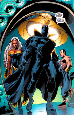 Black Panther / T'Challa