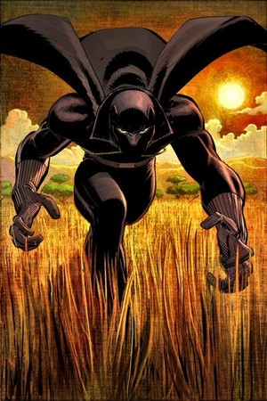 Black panter, panther / T'Challa