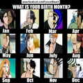 What is your birth month? - bleach-anime fan art