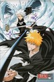 Toushiro and Ichigo - bleach-anime photo