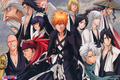Bleach Characters - bleach-anime photo