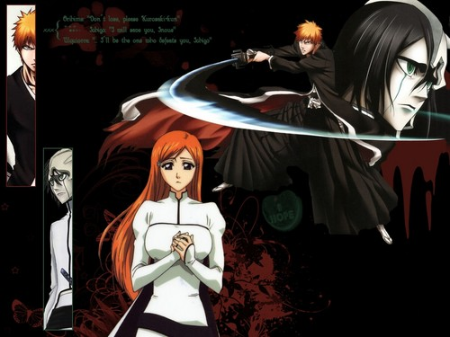Bleach Pairings Wallpaper Probably With Anime Titled Ichigo Vs Ulquiorra For Orihime