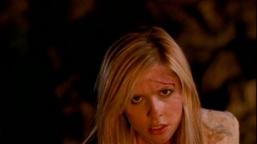 Buffy Summers karatasi la kupamba ukuta with a portrait called Buffy Summers Screencaps