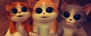 Cute Little 子猫