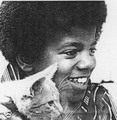 Young Michael Jackson Holding A Cat - cats photo
