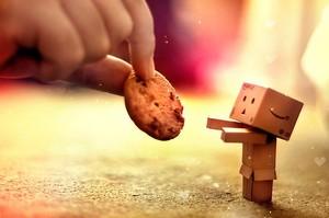noel cookieees-----------
