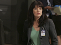 criminal-minds - Emily Prentiss wallpaper
