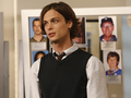 Dr. Spencer Reid - criminal-minds wallpaper