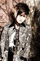 Shoya      - diaura photo