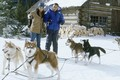 "2002 Disney Film, ""Snow Dogs"" - disney photo"
