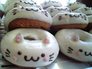 donut cat--------------------