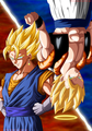 *Vegito / Gogeta** - dragon-ball-z photo