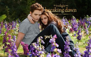 Breaking Dawn वॉलपेपर