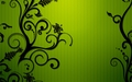 Green And Black Wallpaper - green wallpaper
