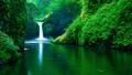 Green Waterfall - green photo