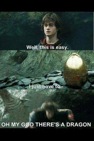 Harry Potter, GoF