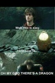 Harry Potter, GoF - harry-potter-and-percy-jackson-rp photo
