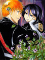 ººIchiRukiºº - ichigo-and-rukia-sun-and-moon photo