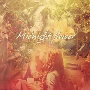 midnight پھول