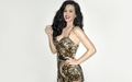 katy-perry - Katy Perry in printed outfit wallpaper