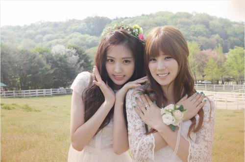 Kpop wallpaper containing a bridesmaid titled A Pink - Secret Garden